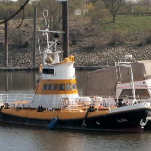 Wal (MRB/VK Bremen III) in Finkenwerder, 2013.